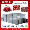 Имена полностью сухой машины сушильщика плодоовощей от обезвоживателя фабрики Kinkai
