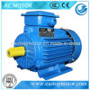 Cer anerkannter Y3 Motor Iec-60034 für das Bergbau mit Aufgabe S1