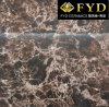 De verglaasde Marmeren Tegel van het Porselein