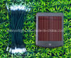 Luce solare del giardino del LED (LC non-copre)
