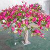 Arbres artificiels de magnolia de 2 mètres avec les fleurs rouges