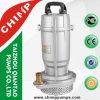 1 Zoll-Ausgangsgebrauch-versenkbare Pumpe (QDX1.5-32-0.75) Saso genehmigt