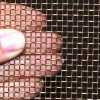 Fabricante-fornecedor de China do engranzamento de fio de bronze (BWM)