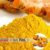 Polvo natural del extracto de la cúrcuma de la curcumina 95