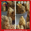 Tablettes procurables de l'aperçu gratuit 500mg Maca pour les hommes et des femmes