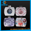 PP Pet Packaging Material PVC de la ropa interior diseño de la caja