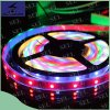 크리스마스 12V 5050 Decoration LED Light Strip Light
