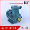 Fireresistant Explosion - Proof Three Phase Electric AC Motor