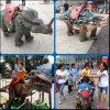 Rit op de Dinosaurus van de Robot van het Park van het Thema