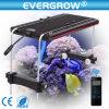 高い発電最も安い情報処理機能をもったLEDのアクアリウムライト