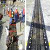 GummiExpansion Joint für Bridge mit Best Quality