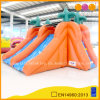 Mini Water Slide per Kids (AQ1024-1)