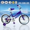 Lovely Mini Beach Cruiser and Children Beach Cruiser Bike for Girl