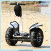 Motorino elettrico d'Equilibratura della strada del trasporto personale elettrico del vagone per il trasporto dei lingotti a ruote due