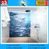 porte de salle de bains en verre givré de 4-12mm