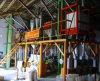 トウモロコシの製粉機械/Flourの自動製造所