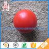 空の堅いプラスチック球の白い小型球