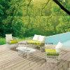شعبيّة تصميم سعر جيّدة خارجيّة جديد خارجيّة حديقة أريكة يثبت مع [كفّ تبل] ([يت893])