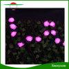 방수 요전같은 정원 옥외 결혼식 크리스마스 장식적인 빛이 50의 LED 로즈 꽃 태양 끈에 의하여 점화한다