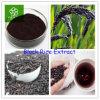 100%の自然で黒い米のエキスの粉