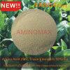 유기 비료 킬레이트화된 붕소 아미노산