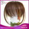 ブラジルの人間の毛髪は直毛の強打に縁を付ける