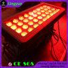 36X10W RGBW 4in1 옥외 LED 벽 세척 빛