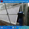 Chambre verte hydroponique en verre d'usine de la Chine pour l'agriculture de Rose