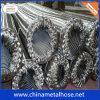 Boyau tressé d'acier inoxydable de bonne qualité
