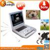 動物の妊娠のための獣医の安い携帯用超音波
