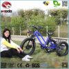 500W 전기 세발자전거 소녀를 위한 뚱뚱한 타이어 바닷가 자전거
