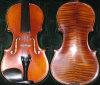 Violine - 2