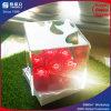 Erstklassiger Entwurfs-Acrylblumen-Kasten