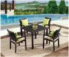/Rattan al aire libre/vector de Chair& de la rota de los muebles del jardín/del patio fijó (HS1211C&HS7090DT)