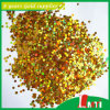 Glitter variopinto Powder Bulk per Coating