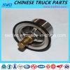 Thermostat véritable pour Sinotruk Truck Spare Partie (Vg1047060001)