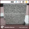 Bush hammerte Platte des Sesam-graue Granit-G654 mit konkurrenzfähigem Preis