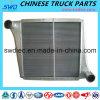 Refroidisseur intermédiaire pour la pièce de rechange de camion de Sinotruk HOWO (WG9725530020)