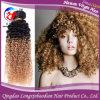 1b/27 Omber красит человеческие волосы курчавых волос девственницы Remy бразильских Weft (HSTB-A811)