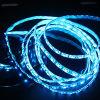 방수 최신 판매 크리스마스 장식적인 RGB LED 지구 빛