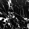 Mattonelle-QS di marmo in bianco e nero naturali di Nero Marquina di prezzi poco costosi