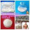 Acetato steroide 1045-69-8 del testoterone della polvere del rifornimento della fabbrica per forma fisica di Bodybuilding