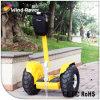 工場価格のリチウム電池の電気自動車2の車輪の自己のバランスをとるスクーター