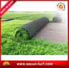 屋外の装飾の草は庭のための総合的な泥炭にカーペットを敷く