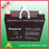 Bateria selada 12V acidificada ao chumbo Np35-12 do AGM da bateria 35ah