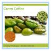 Precio de fábrica 5 en 1 belleza eficaz fuerte que adelgaza el café