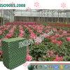 Garniture verte de refroidissement par évaporation avec la qualité 5090/7090/7060