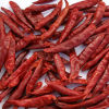 S/poivron rouges chinois avec la qualité