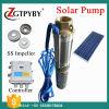 3inch 태양 잠수할 수 있는 펌프 태양 Tubewell 심상 DC48V 750W 태양 펌프
