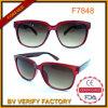 Bens brilhantes do Eyeglass dos frames dos vidros da cor de China